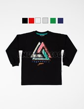 REMERA ML NIÑO. ESTAMPA LEGENDARY. COLORES SURTIDOS. GRUNY.